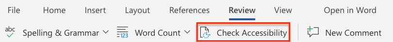 image showing option to check document accesibility