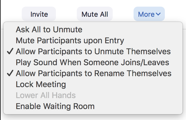 options menu for controlling speech settings for participants