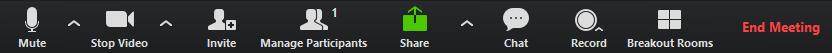 Zoom meeting menu bar.